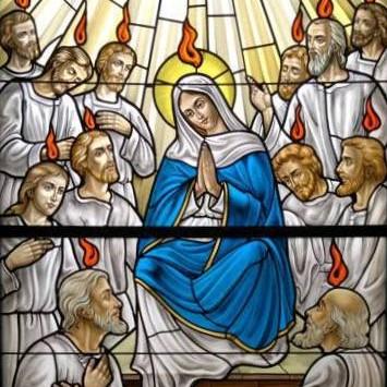 Homilia do Papa Francisco